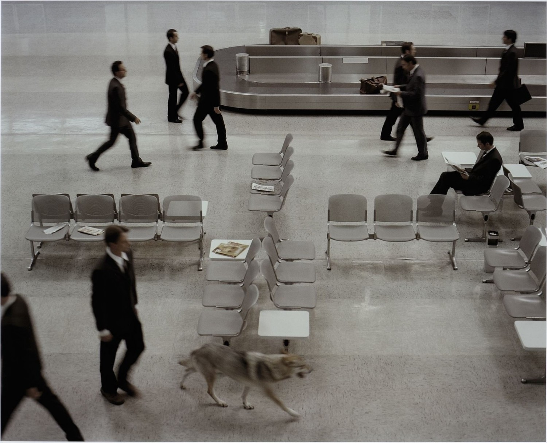 The Wolf in Tempelhof